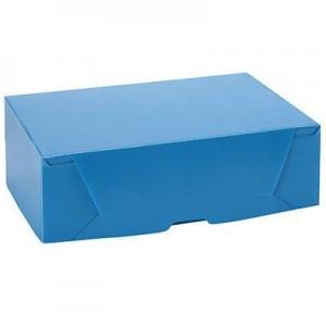 Caja de archivo Plastica Legajo Nro 2 (38x28x12)