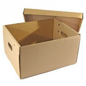 Caja de carton Multiuso 42x3x25cm