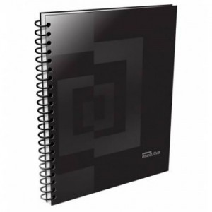 Cuaderno Ledesma Executive 16x21 Ray x 120 hjs.