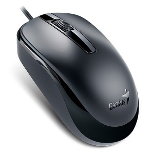 Mouse Genius DX-120 USB Black